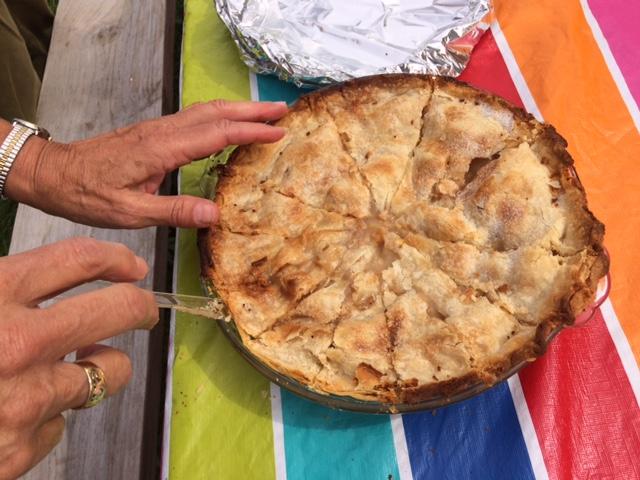 Garden Potluck Pie